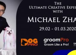 Michael Zhang Creative Style - Seminar & Workshop