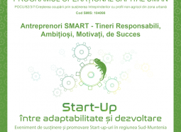 Antreprenori SMART